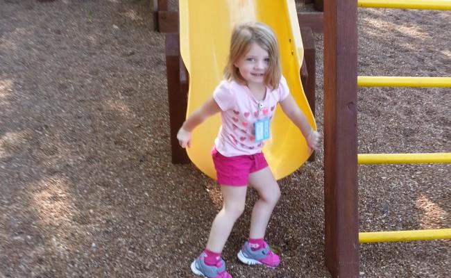 Activity 2014 Playground