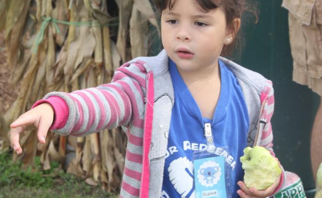 Field-trip-Preschool-&-K-trip-to-Eckerts-040